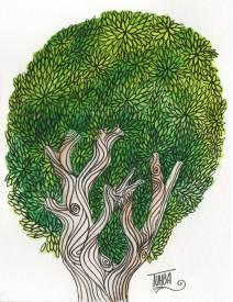 Boom (Tree)