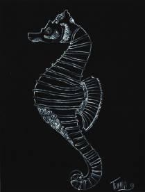 Zeepaardje (Seahorse)